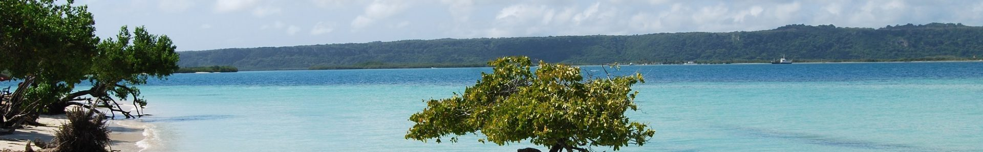 World Team Project – Sustainable Solutions: Ocean Opportunities & Small Island States (SOS-IS)